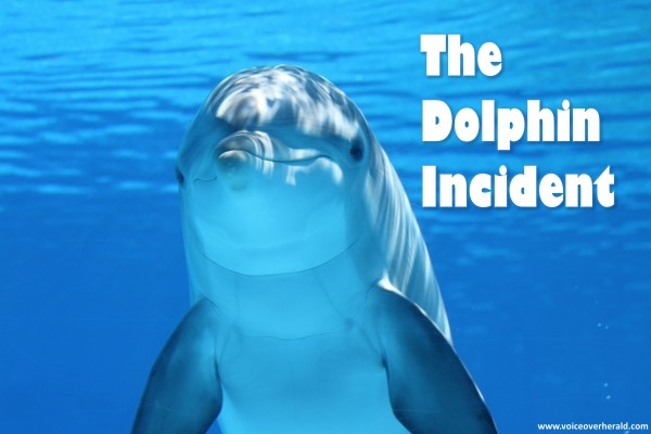 The Dolphin Incident